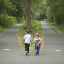 Afbeelding De weg die je gaat